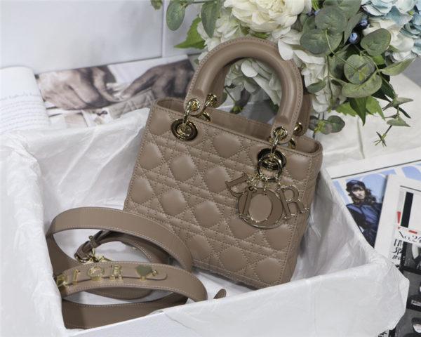 lady dior my abcdior bag small